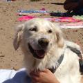 Eva In spiaggia